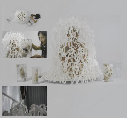 Props /newt francois roche